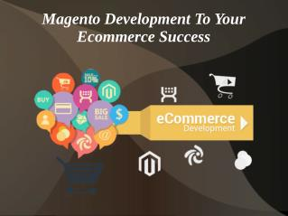 Magento Development to Your Ecommerce Success