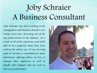Joby Schraier -  A Business Consultant