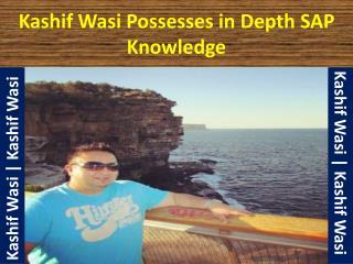 Kashif Wasi SAP Expert