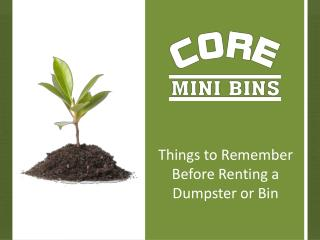 Things to Remember Before Renting a Dumpster or Bin