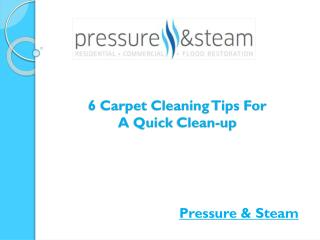 6 Carpet Cleaning Tips For A Quick Cleanup