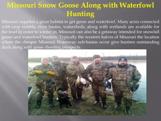 Missouri Snow Goose Along with Waterfowl Hunting