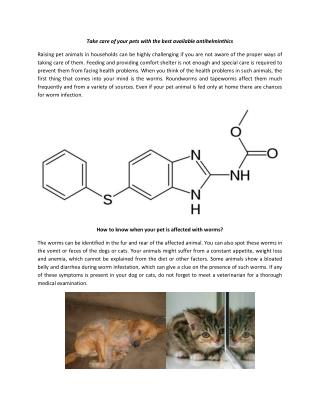 How Fenbendazole is Useful Medicine for Animals?