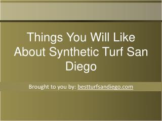 Things You Will Like About Synthetic Turf San Diego