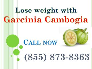 (855) 873-8363 weight loss supplement garcinia cambogia