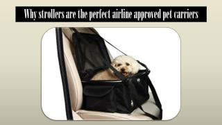 Why strollers are the perfect airline approved pet carriers