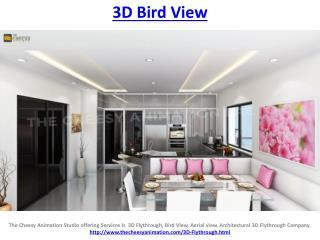 3d bird view