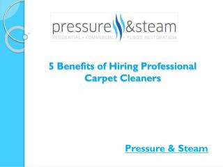 5 Benefits of Hiring Professional Carpet Cleaners