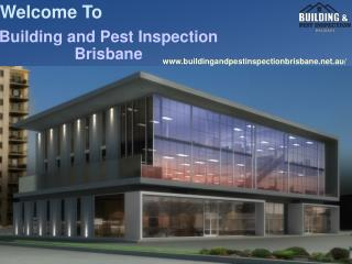 Strata Inspection Report Brisbane