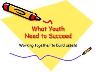 What Youth Need to Succeed