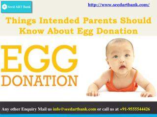 Few Things Intended Parents Should Know About Egg Donation