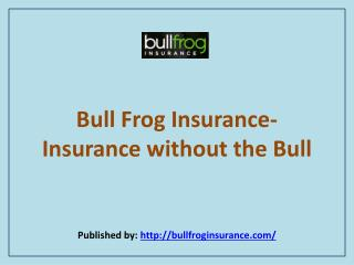 Insurance Without The Bull