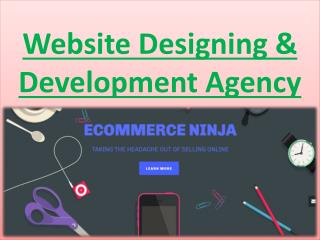 Website Designing & Development Agency