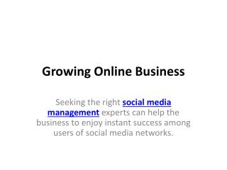 Growing online business