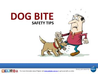 Dog Bite Safety Tips
