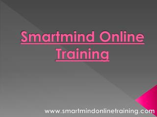 Smartmind Online Training Trainers Strategy | Smartmind Online Training Review