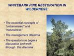 WHITEBARK PINE RESTORATION IN WILDERNESS: