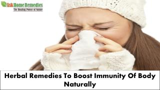 Herbal Supplements To Make Strong Immune System