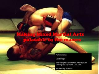 Making Mixed Martial Arts palatable to the masses