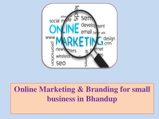 Online Marketing & Branding for small business in Bhandup