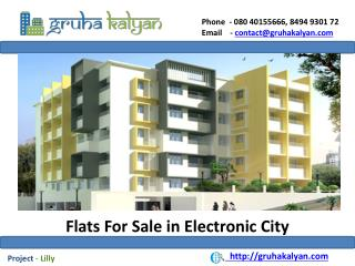 Flats for sale in electronic city