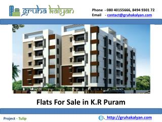 Flats for sale in k.r puram