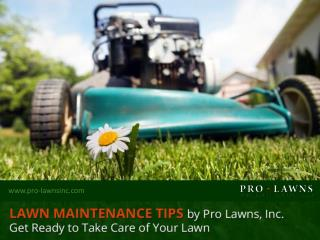 Commercial Lawn Maintenance - Summer Tips