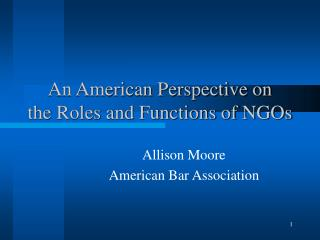 An American Perspective on  the Roles and Functions of NGOs