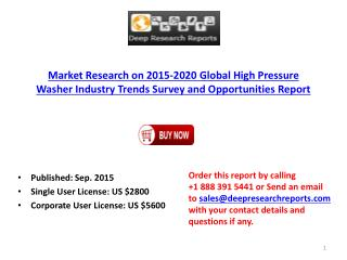 Global High Pressure Washer Industry Market Growth Analysis and 2020 Forecast