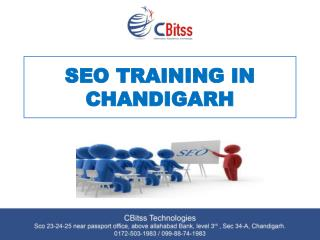 SEO Training in Chandigarh, SEO Course in Chandigarh, SEO Training institute in Chandigarh, SEO Coaching in Chandigarh,