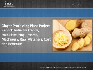 Ginger Processing Plant Project Report