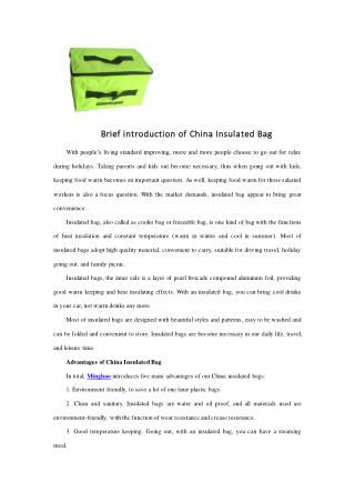 Brief introduction of China Insulated Bag