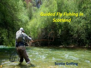 Guided Fly Fishing in Scotland