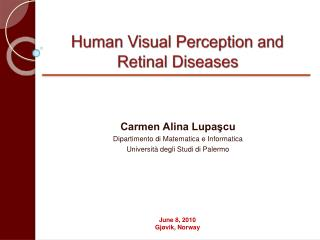 Human Visual Perception and  Retinal Diseases