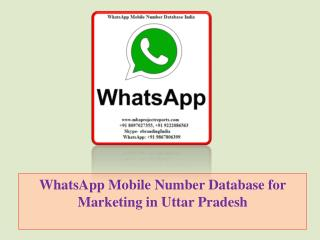 WhatsApp Mobile Number Database for Marketing in Uttar Pradesh