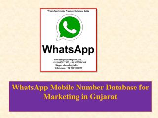 WhatsApp Mobile Number Database for Marketing in Gujarat