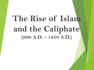 Mayer - World History - Islam and the Caliphate