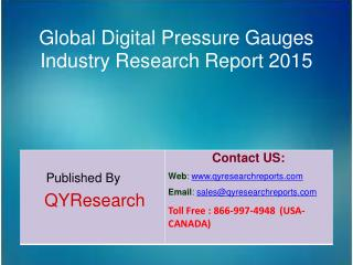 Global Digital Pressure Gauges Market 2015 Industry Growth, Trends, Analysis, Research and Development