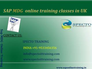 sap mdg online training classes in australia