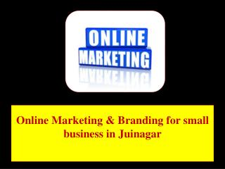 Online Marketing & Branding for small business in Juinagar