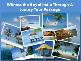 Witness the Royal India Through A Luxury Tour Package