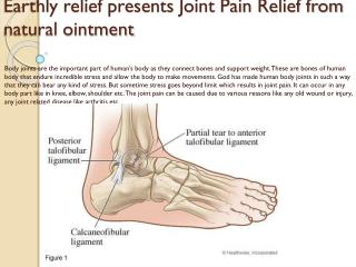 Faster Joint Pain Relief Using Earthly Relief Ointment