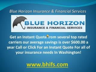 Blue horizon insurance & financial services washington