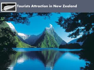 Tourists Attraction in New Zealand