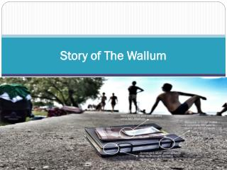 Story of The Wallum