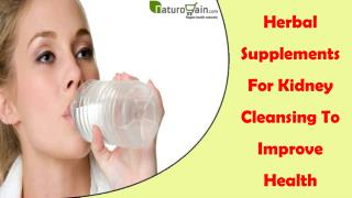Herbal Supplements For Kidney Cleansing To Improve Health