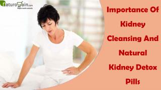 Importance Of Kidney Cleansing And Natural Kidney Detox Pills