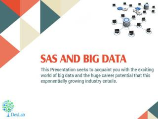 SAS and Big Data- The Big New Possibility