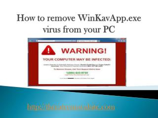 How to Remove/Uninstall WinKavApp.exe from PC Efficiently