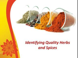 Herbs and spices used in Greek foods | yolenis.us